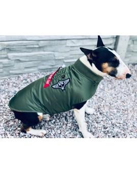 Alpha Industries Dog MA-1 Nylon Flight Jacket (olive, blue)