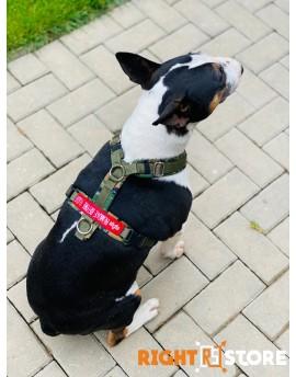 Alpha Industries Dog Harness