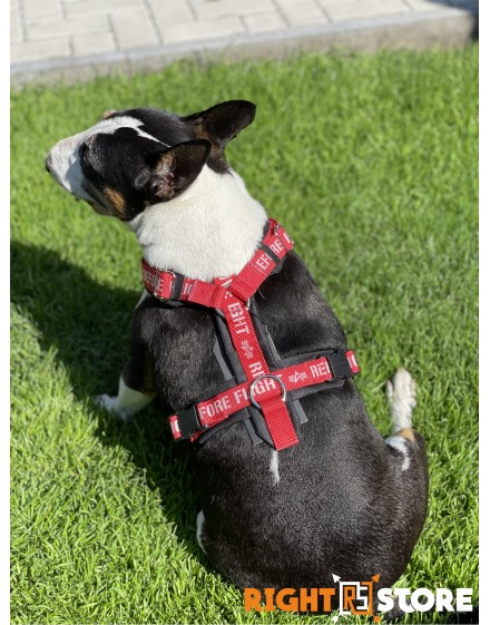 Alpha Industries Dog RBF Harness